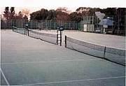 長岡京でテニス