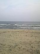 KING-SURF&GAME