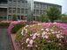 滋賀県立国際情報高校