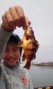 長野からの海釣り