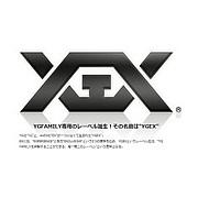 YGEX - ワイジーエックス -