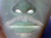 顔面に住むゴリラ