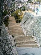 日の出町立平井中2002年度卒業生
