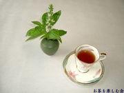お茶を楽しむ会