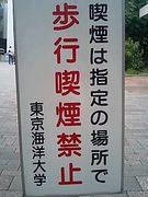 東京海洋大学政策2007☆