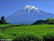 ☆愛する美しい日本☆
