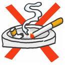 サルの禁煙部屋