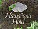 Hawaiiana Hotel