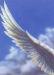 イカロスの翼