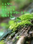 ☆♪We`re mihimaList♪★