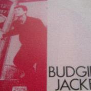 budgie jacket