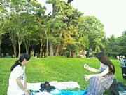 ピクニックとグルメ・遠足の会