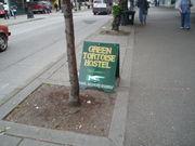 Green Tortoise Seattle