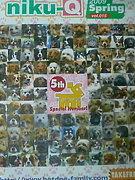 犬猫フリーペーパー niku-Q