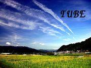 TUBEのカップリング曲