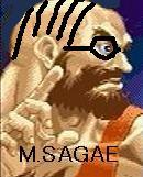 SAGAE研