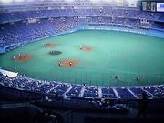 大阪ドームで野球を見よう