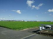 神奈川西部で集まる会