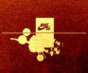 NikeSkateBoarding
