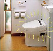 ☆トイレのフタ閉め症候群☆