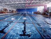 ●玉泳会●