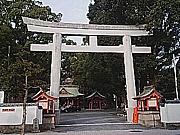荒田(鹿児島市)んし