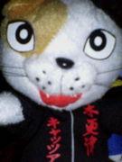 IT-CATにゃー!!!!!!!