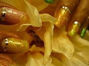 ネイル立石 Lotsu Blossom nail