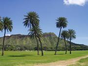 ハワイ写真館