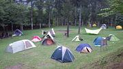 ヤマハmtg前日キャンプ