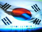 韓国で会いましょう