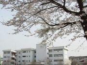茨城県筑西市立大田小学校