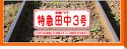 ☆特急田中3号☆