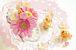 ウチ*花〜お花の仲間たち〜