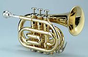 山大系列金管五重奏団