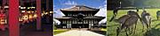 英語による奈良観光ガイド