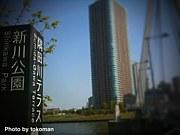 隅田川テラスで散歩しませんか?