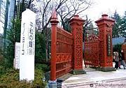 学習院女子大学★2012☆入学予定