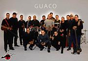 GUACO / グアコ