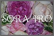 SORA-IRO ソライロ