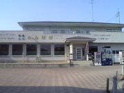 たんぽぽ in金谷川