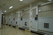 大阪 曽根崎 警察署 留置所