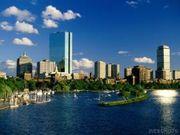 ゎたしら、Bostonっ子。