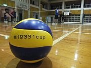 volleyball331