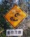 動物注意標識探索隊