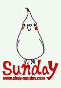 セレクトショップ Sunday