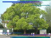 掛川市立和田岡小学校