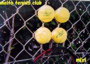 名東女子テニス部
