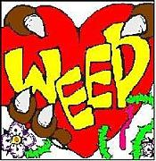 WEED(ウィード)