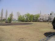 白山公園(東久留米市)